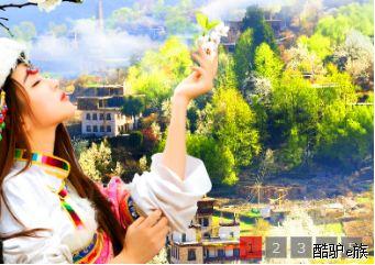 四川成都青旅总部和分社的区别