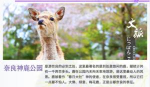 【巨蛋假期】<日本本州双温泉品质7日游>