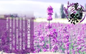 【春节·高端日本】 <日本全景至尊奢华七日游>